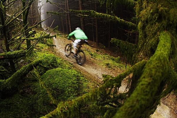 mountain-biking-limerickF4493F71-9521-20B6-7F2E-F0AEDE73C47B.jpg